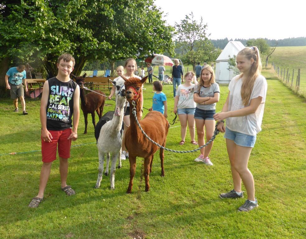 Sommerfest auf dem Alpakahof